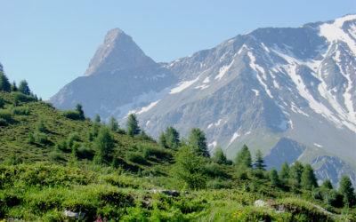 Aunkai: stage en Isère.