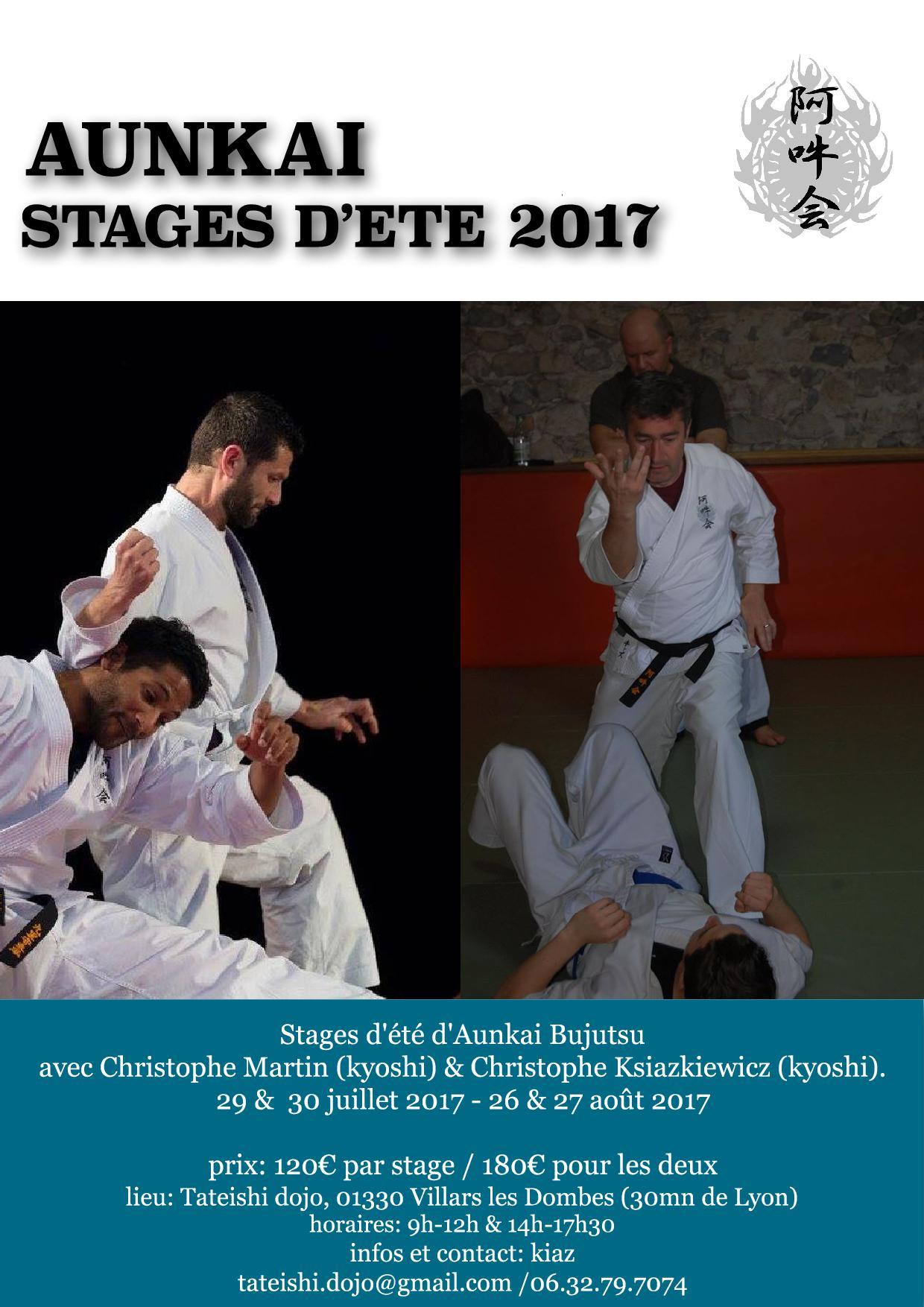 Stages d'été 2017