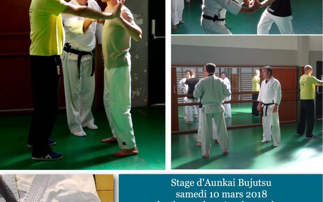 Bujutsu Aunkai à Nantes.