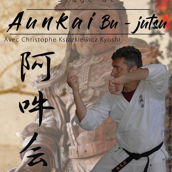 Bujutsu Aunkai à Saint Jean en Royans.