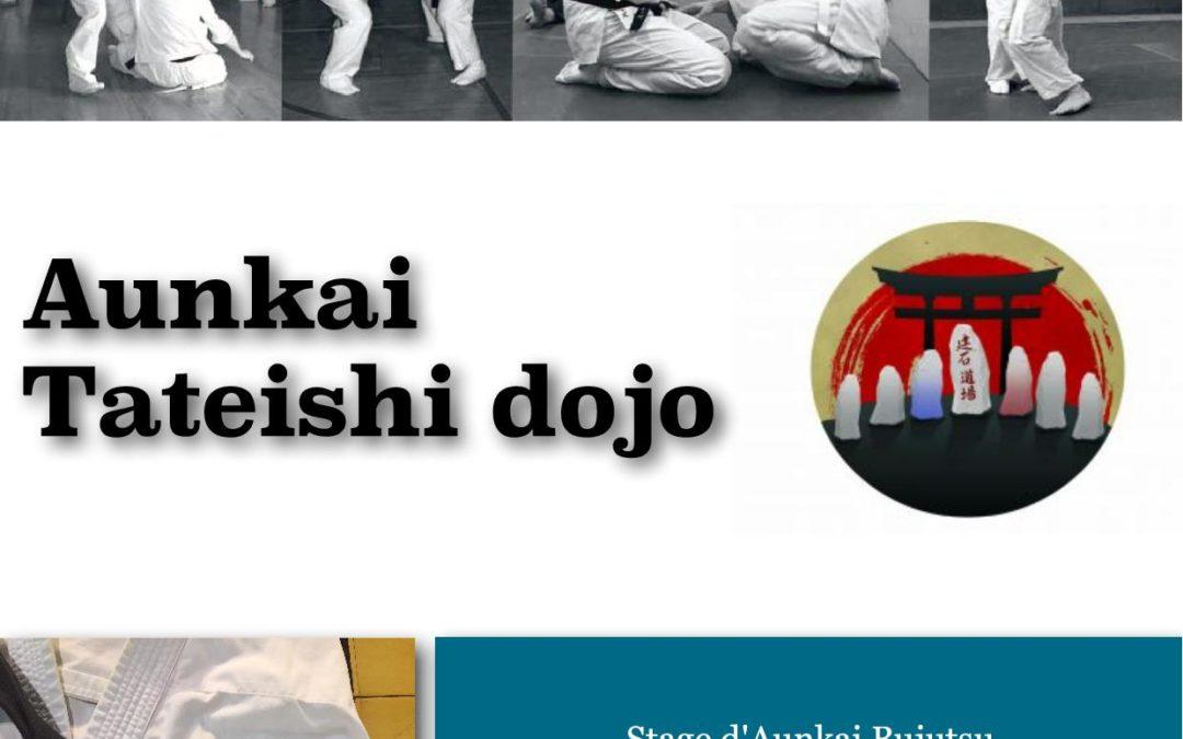 Bujutsu Aunkai au Tateishi Dojo
