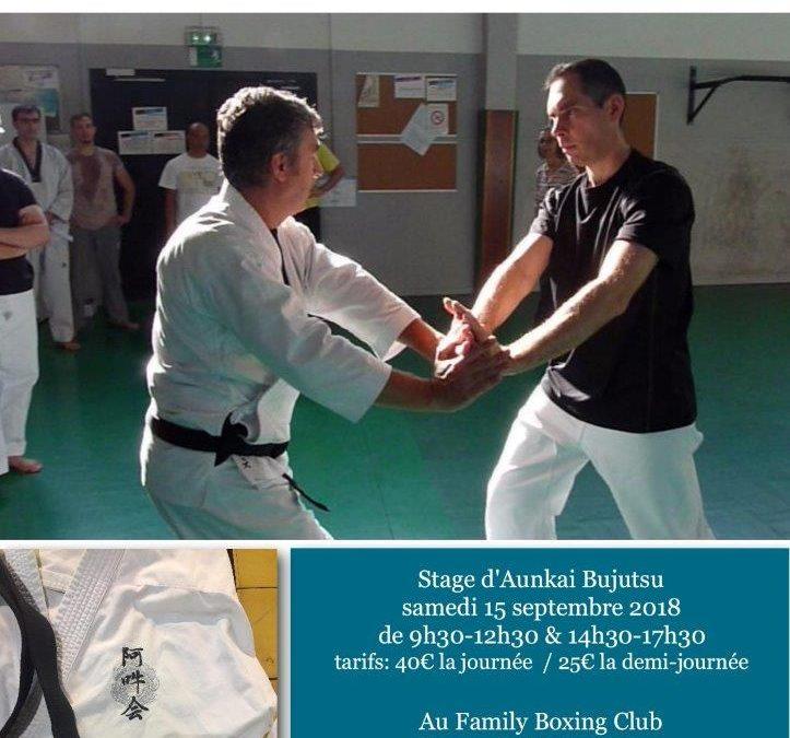 Bujutsu Aunkai à Nantes