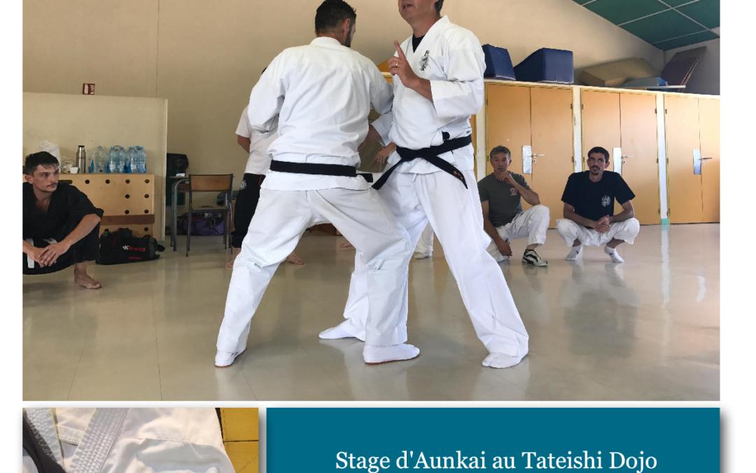 Bujutsu Aunkai Tateishi Dojo