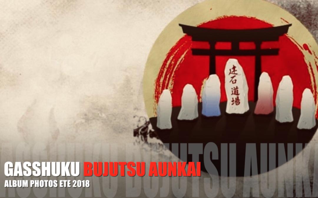 Aunkai: retour sur les Gasshuku d'été 2018.