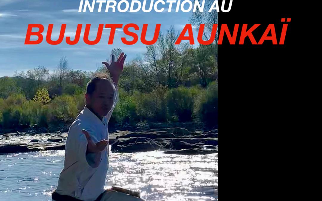 Le Livre sur Bujutsu Aunkai