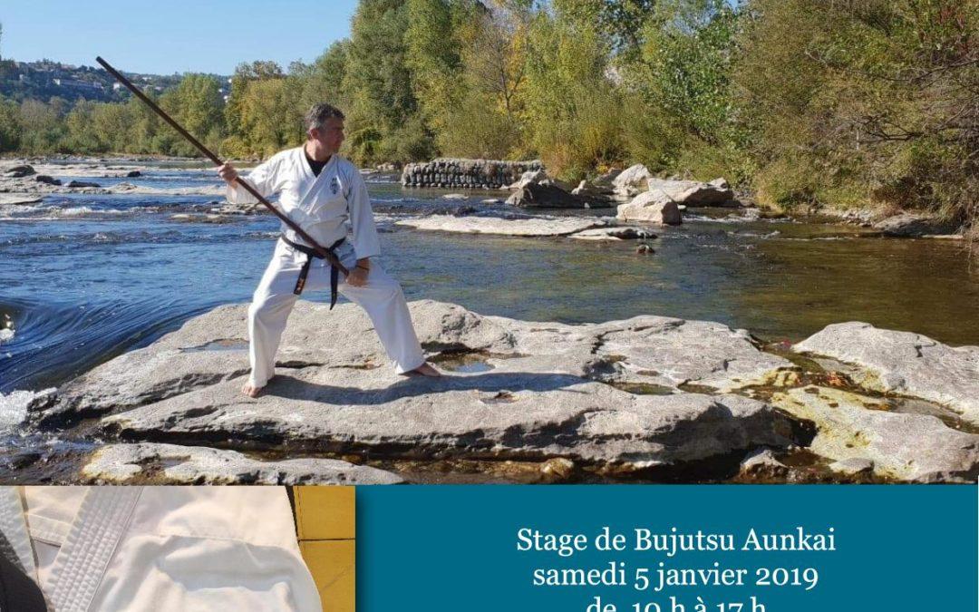 Bujutsu Aunkai au Tateishi dojo.