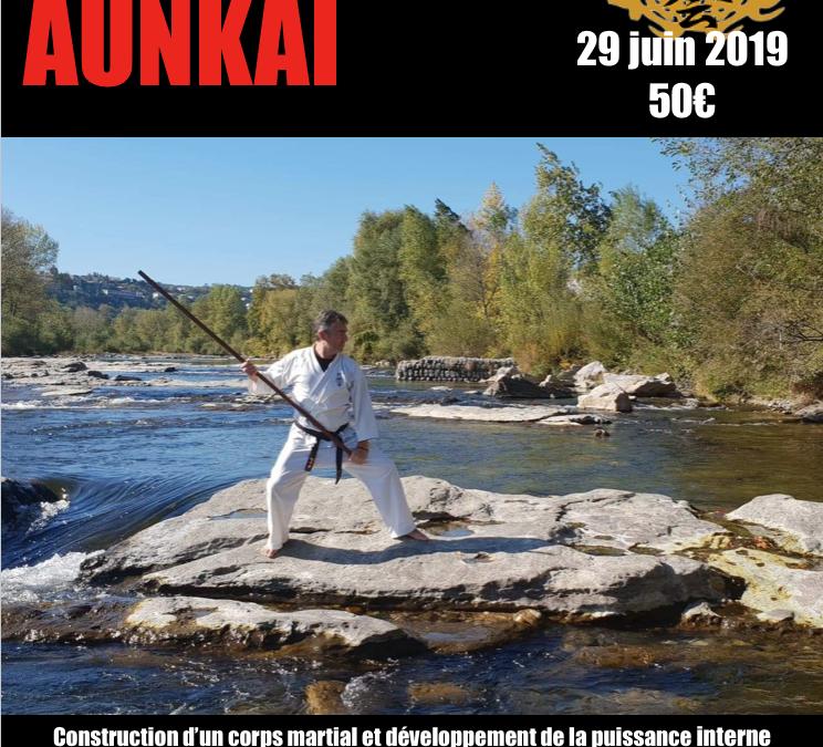 Aunkai: stage avec Kiaz (kyoshi) au Tateishi dojo Villars (01330)