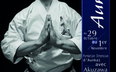 Stages Aunkai  pour la fin 2013